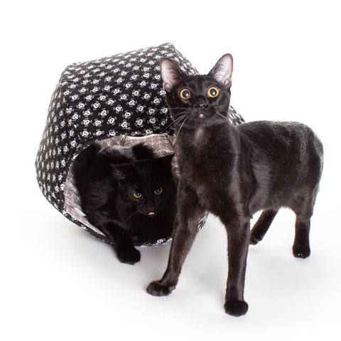 Two black cats and the Cat Ball® modern cat bed, made in skull and crossbones cotton fabric