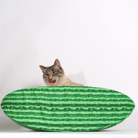 Watermelon Cat Canoe - a pet bed that looks like fruit