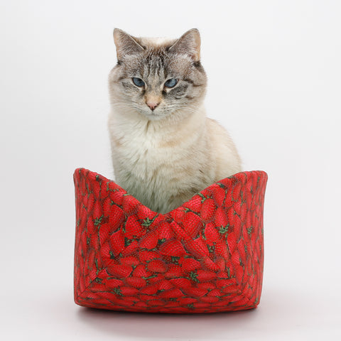 Cat Canoe modern pet bed made in realistic strawberry print fabric