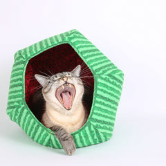 Cat yawning inside a watermelon fabric Cat Ball hexagonal cat bed