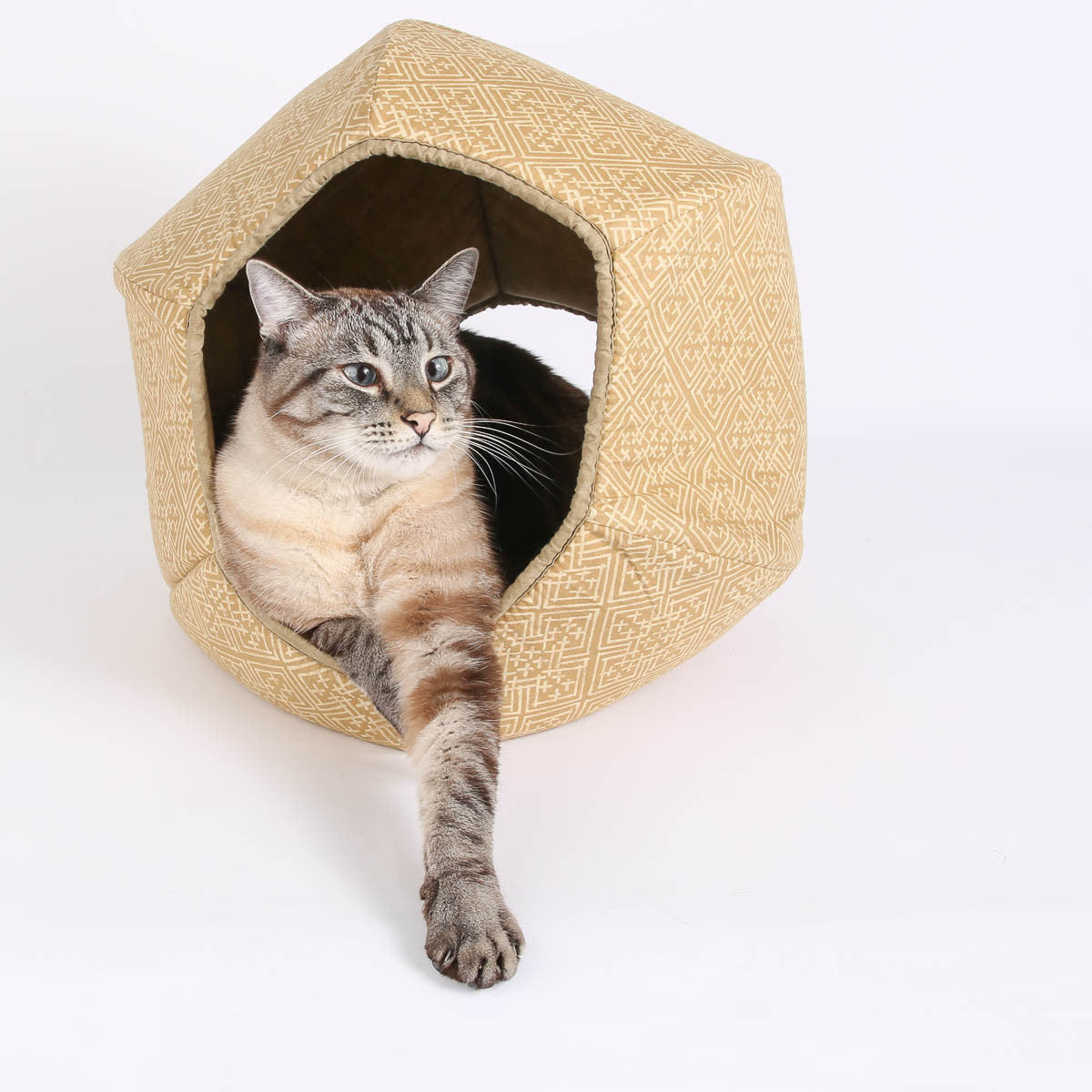 Modern cat beds cozy cat bed designs for modern pets that deserve the attention modern cat - Contemporary cat furniture ideas ...