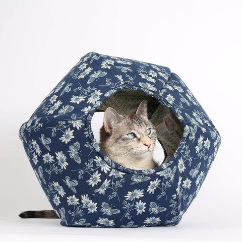 Tink is the Siamese cat model in this blue butterfly CAT BALL cat bed