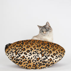 A small cat inside the jumbo Cat Canoe bed, made in leopard fabric