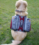 Pet self-packing out portable bag detachable chest back travel bag - Direct Dropship