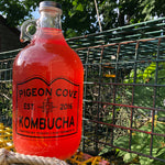 Load image into Gallery viewer, Blueberry Cinnamon Kombucha