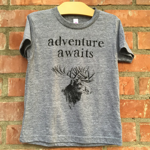 Adventure Awaits Vintage Grey Tee