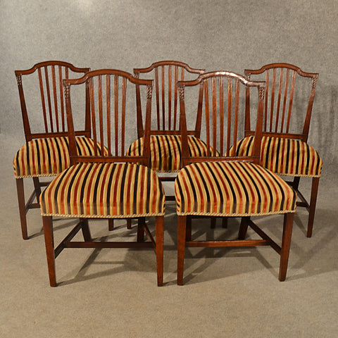 Antique Dining Chairs Set of 5 Quality Mahogany Georgian Sheraton English c1800