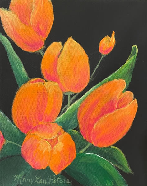 Crushing on Orange Tulips
