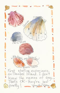 Sanibel Island: Seashells