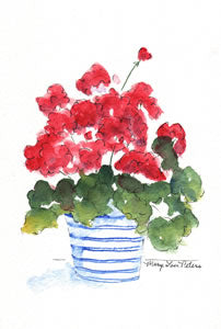 Geranium in Blue and White Pot