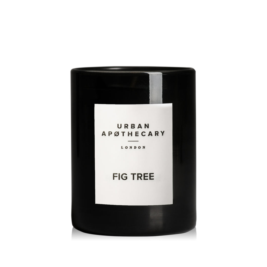 Fig Tree - Small Candle