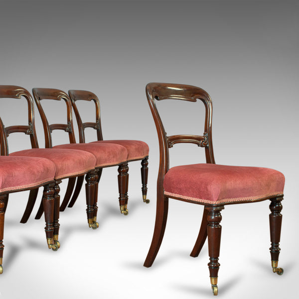 Antique Dining Chair Suite, English, Walnut, Set of, 5 Chairs, Gillow, Victorian - London Fine Antiques