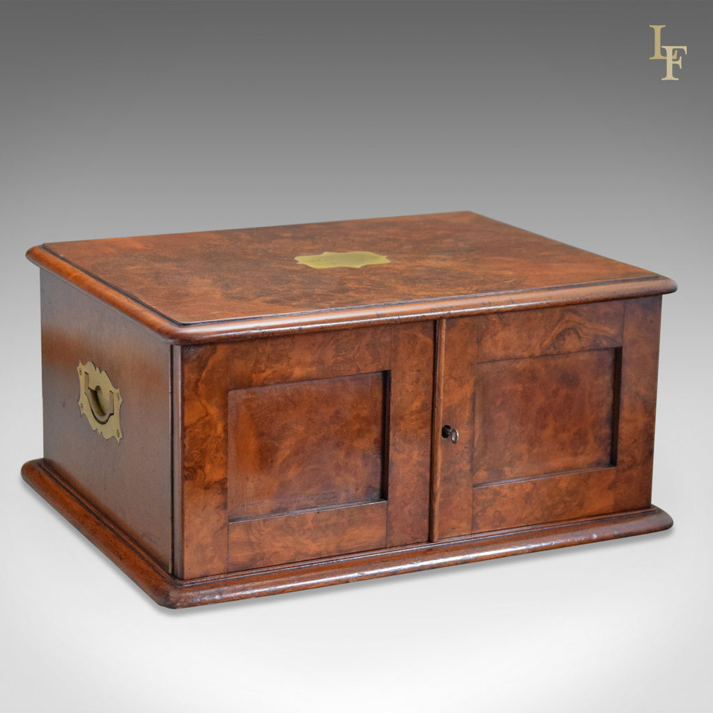 Antique Collectors Chest, Victorian Specimen Cabinet - London Fine Antiques