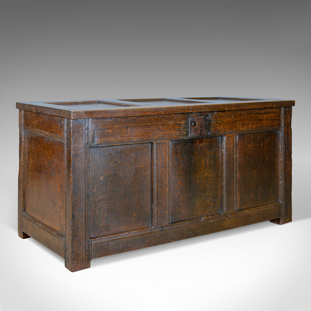 Antique Coffer, Oak, Joined Chest, Three Panel Trunk, Early 18th Century c.1700 - London Fine Antiques