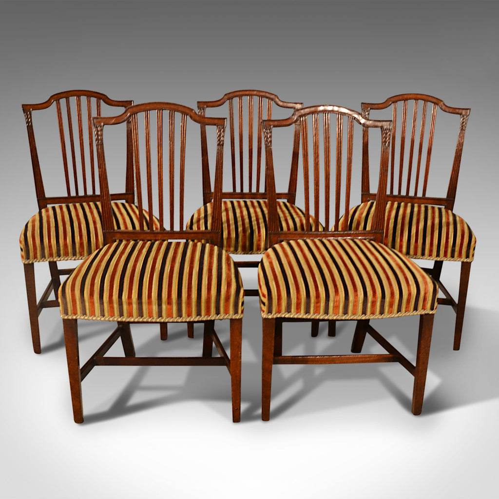 Antique Dining Chairs, Set of Five, Mahogany, Georgian, Sheraton, English c1800