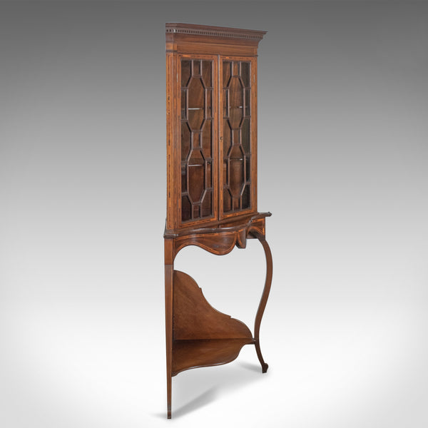 Antique Display Cabinet on Stand, English, Edwardian, Glazed, Mahogany, Corner - London Fine Antiques