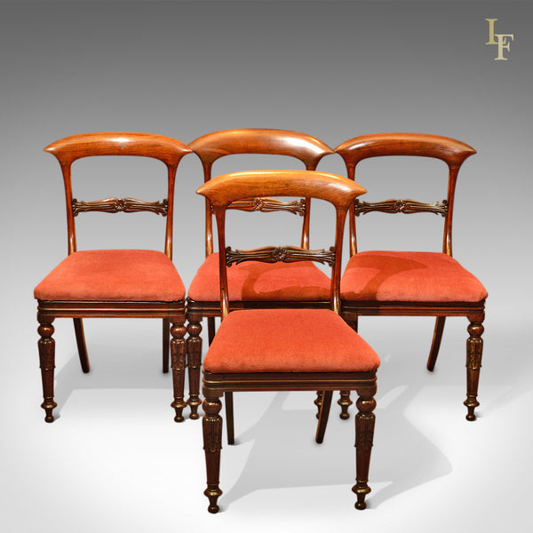Regency Set of 4 Rosewood Antique Dining Chairs, c.1820 - London Fine Antiques