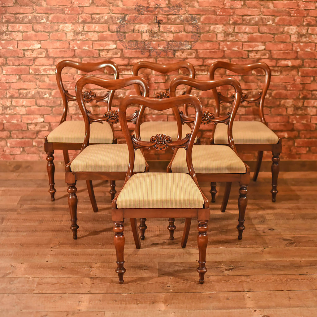 William IV, Set of Six Buckle Back Dining Chairs, c.1835 - London Fine Antiques - 1