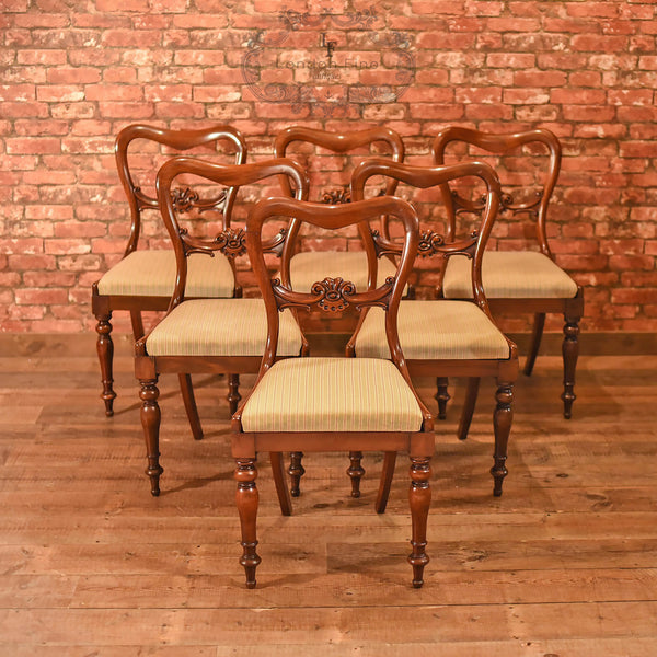 William IV, Set of Six Buckle Back Dining Chairs, c.1835 - London Fine Antiques