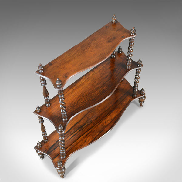 Antique Whatnot, English, Regency, Rosewood, Three Tier, Display Stand c.1820 - London Fine Antiques