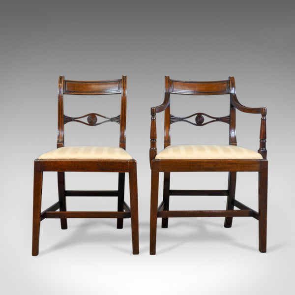 Set of Six, Antique, Dining Chairs, 5+1 English, Regency, Mahogany, Circa 1820 - London Fine Antiques