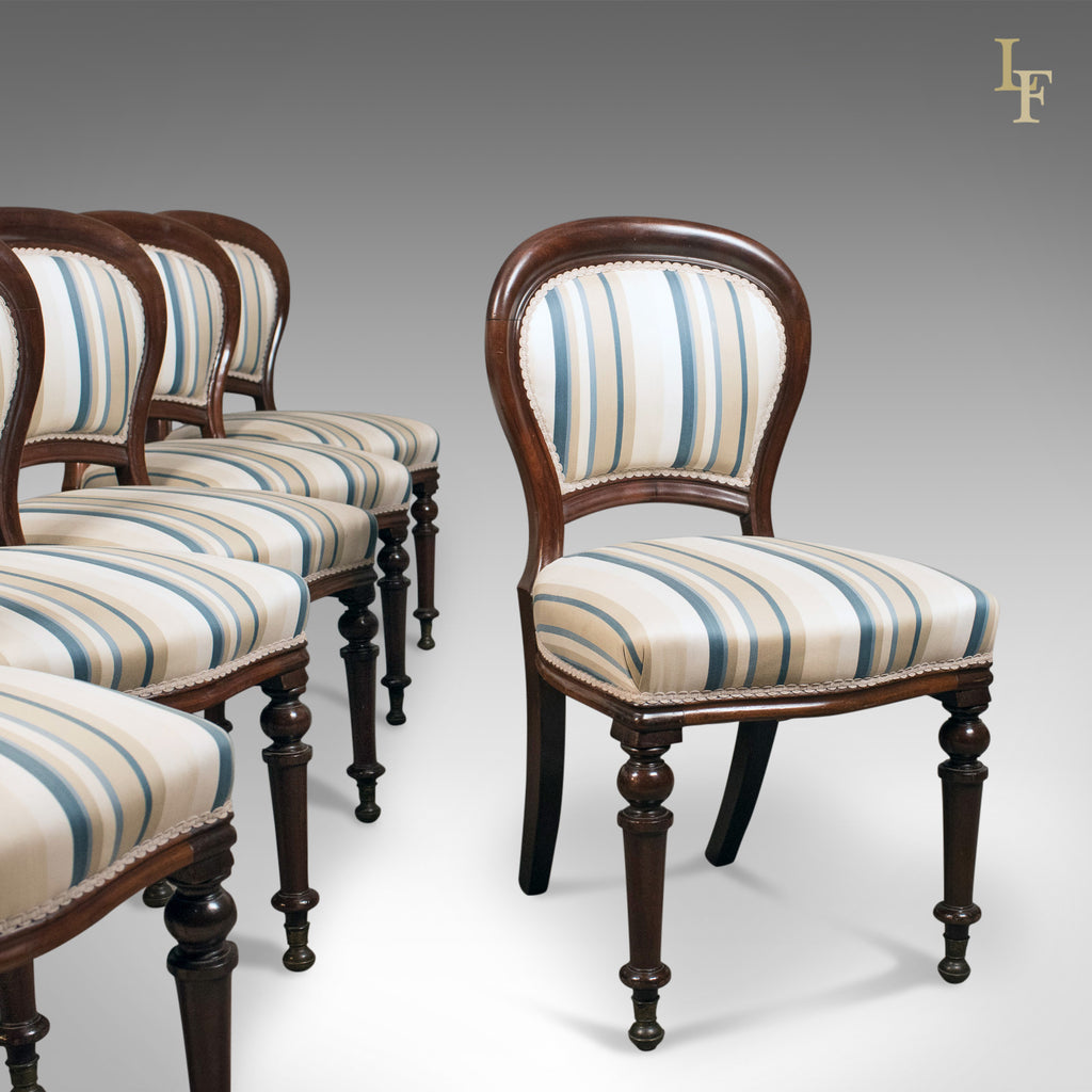 Set of Six Antique Dining Chairs, English, Victorian, Mahogany, Circa 1860 - Set Of Six Antique Dining Chairs, English, Victorian, Mahogany