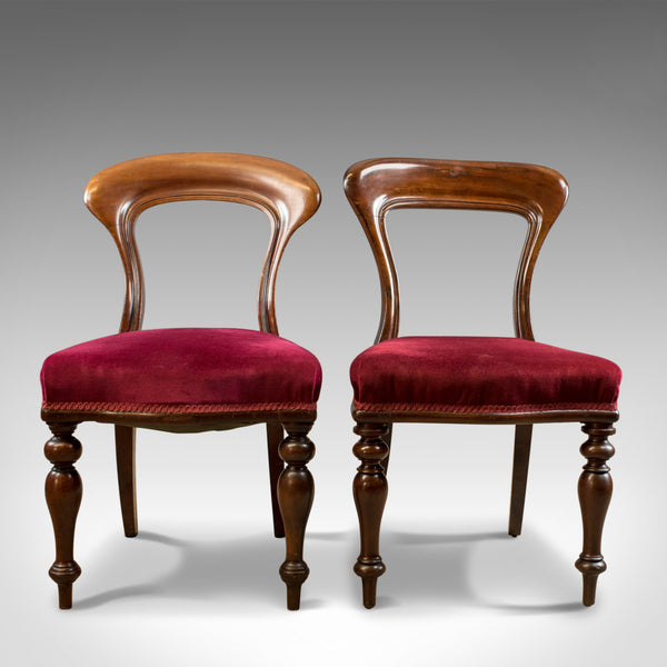 Six Antique Dining Chairs, 4+2, English, Victorian, Mahogany, Upholstered c.1840 - London Fine Antiques