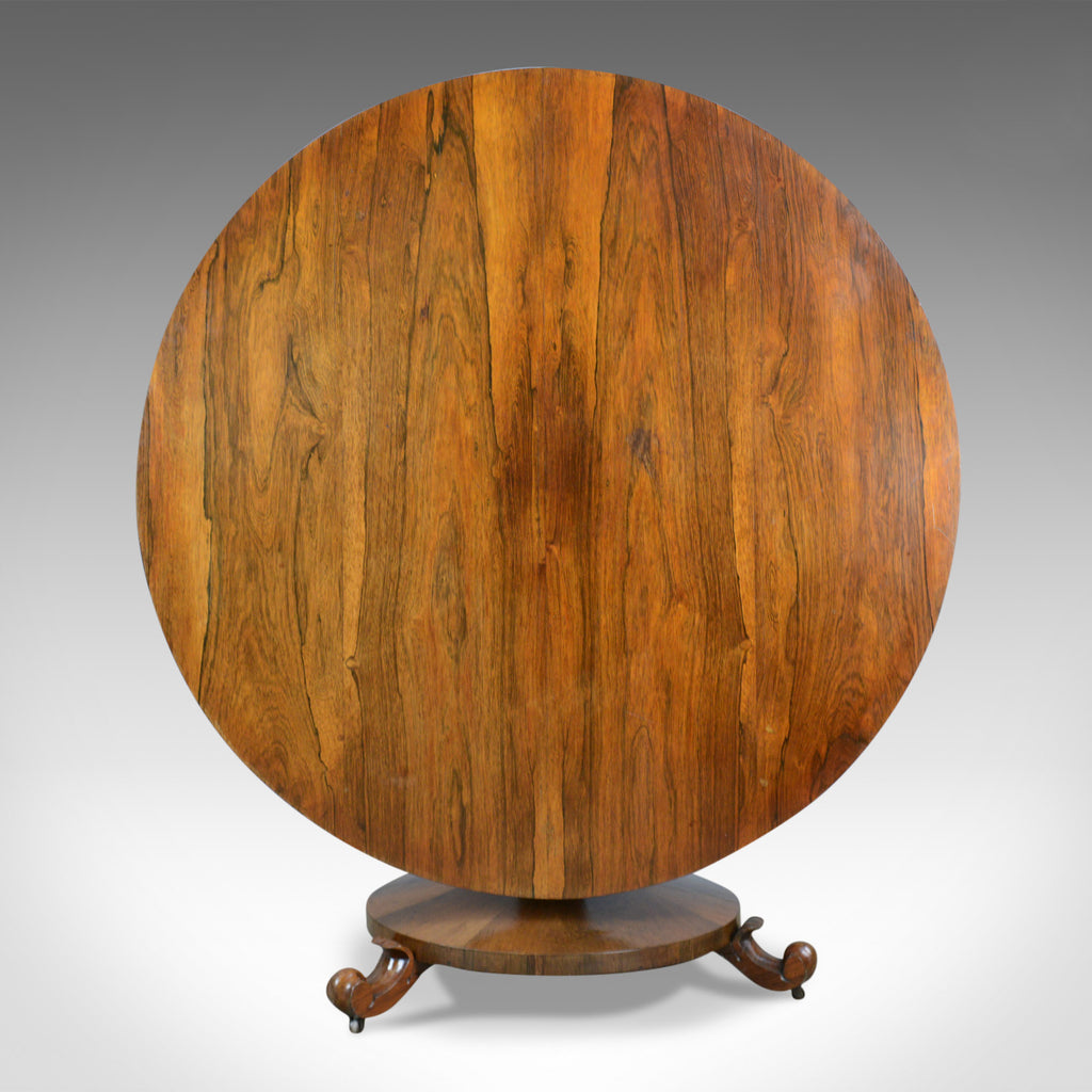 William IV, Antique Breakfast Table, English, Rosewood, Tilt Top, Dining, c.1835 - London Fine Antiques