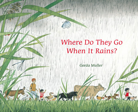 Where Do They Go When It Rains? @ 大樹孩子生活館             Tree Children's Lodge, Hong Kong - 1
