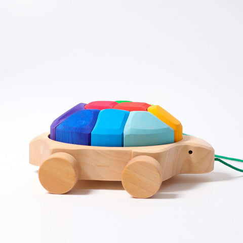 Pull Along Rainbow Turtle with Blocks