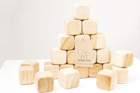 Nature Toys Square Blocks @ 大樹孩子生活館             Tree Children's Lodge, Hong Kong - 4