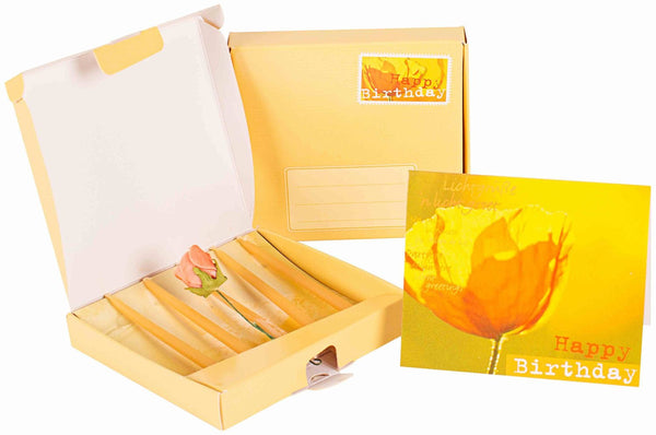 Birthday beeswax candles, gift pack @ 大樹孩子生活館             Tree Children's Lodge, Hong Kong - 1