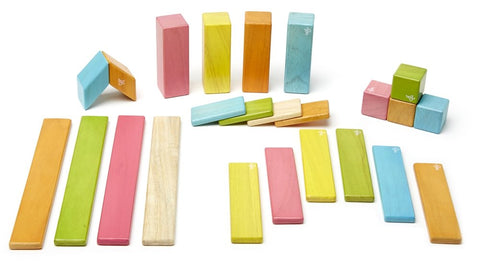 Tegu Magnetic Wooden Blocks (24-Piece Set) - Tints