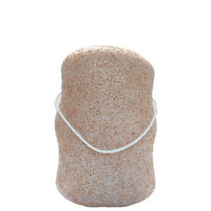 Walnut Konjac Body Sponge Bar