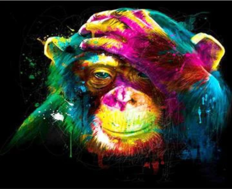 Animal Colorful Monkey Diy Paint By Numbers Kits Uk VM00090