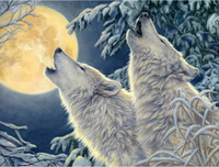 Animal Wolf Diy Paint By Numbers Kits Uk VM91751