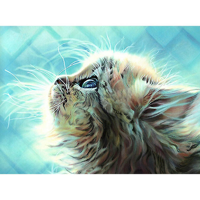 Lovely Cat Diy Paint By Numbers Kits UK PBN57441