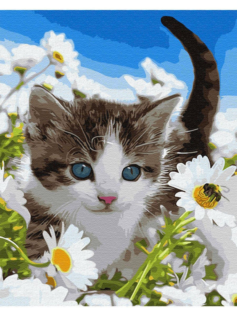 Cat In Flower Diy Paint By Numbers Kits Uk PBN92444