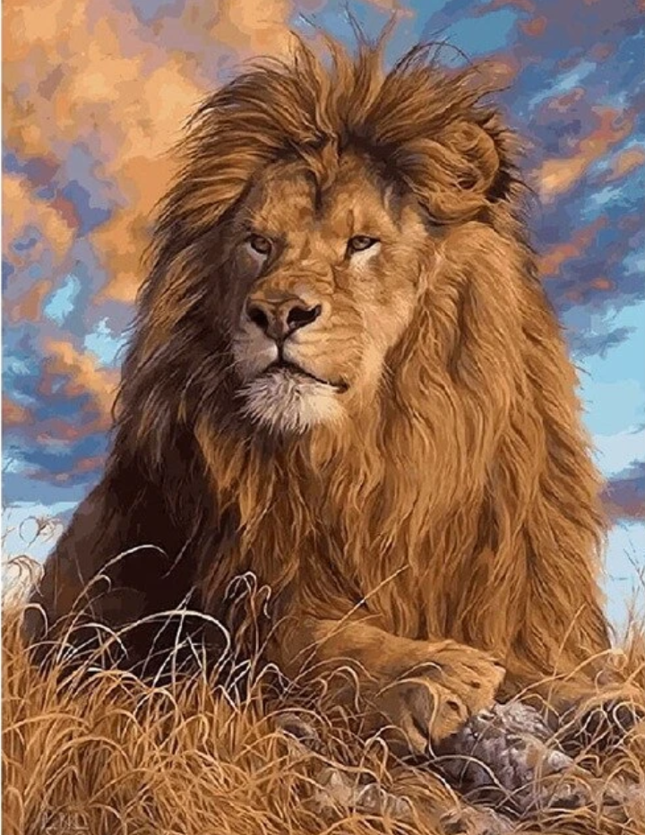 Animal Lion Diy Paint By Numbers Uk PBN90478