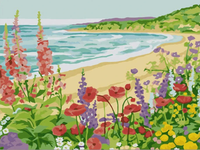 Landscape Seaside Diy Paint By Numbers Kits Uk PBN59244