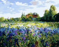 Landscape Flower Sea House Diy Paint By Numbers Kits Uk WM-112