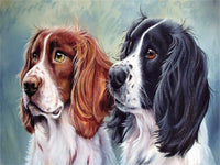 Pet Dog Paint By Numbers Kits Uk PBN90659