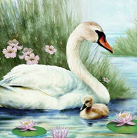 Swan Paint By Numbers Kits Uk PBN90678