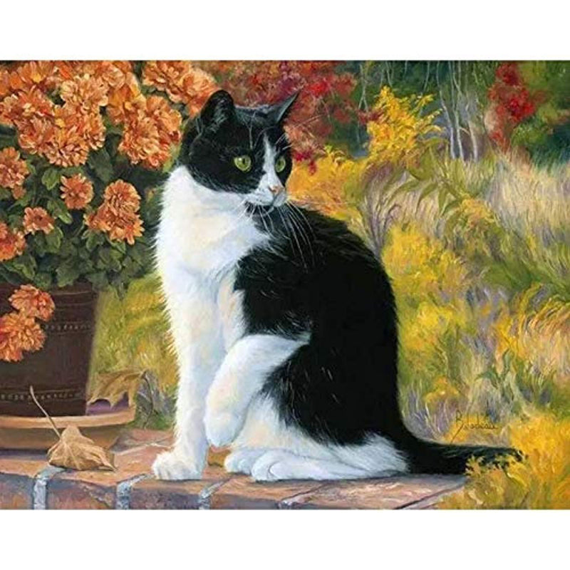 Cat Diy Paint By Numbers Kits Uk VM92186
