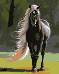 Horse Diy Paint By Numbers Kits Uk PBN92632