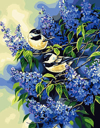 Bird Diy Paint By Numbers Kits Uk  PBN95340