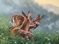 Deer Diy Paint by Numbers Kits UK DIY PBN96426