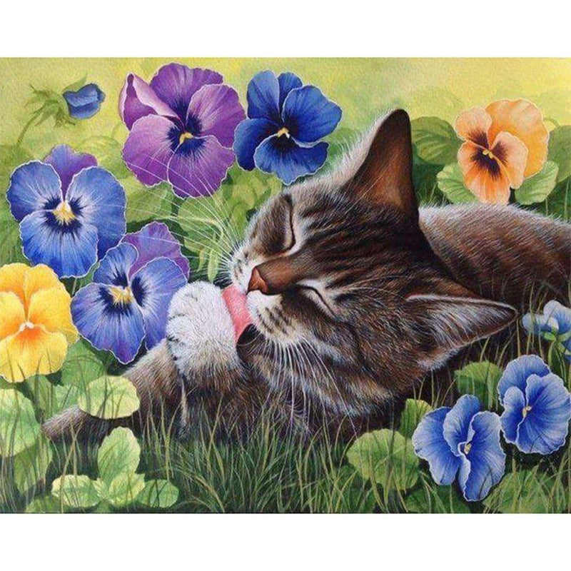 Lovely Cat Diy Paint By Numbers Kits UK PBN97444