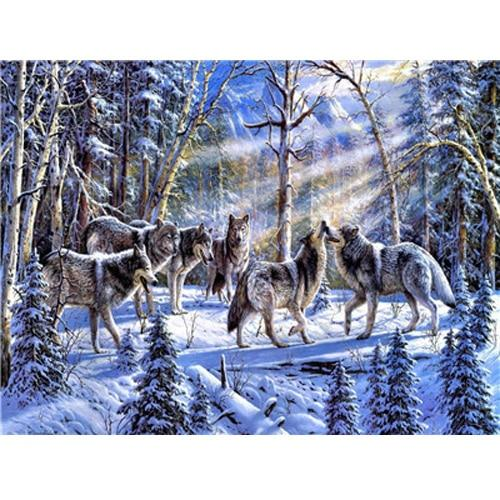 Animal Wolf Diy Paint By Numbers Kits Uk PBN91743