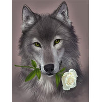 Animal Wolf Diy Paint By Numbers Kits Uk PBN91620